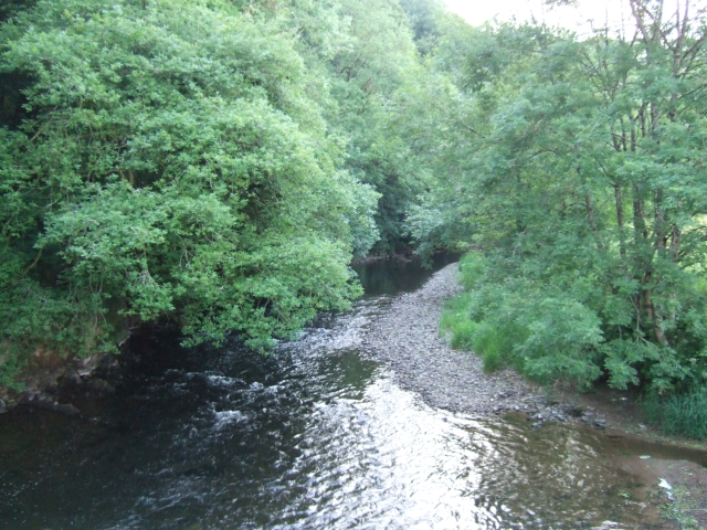 River Exe at Cove