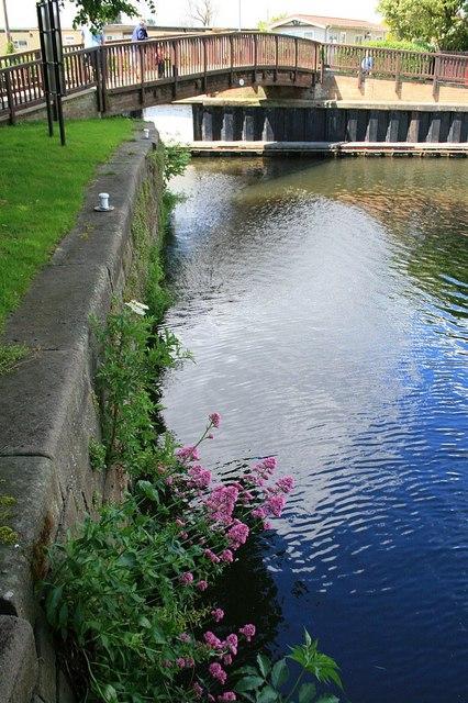 Near Beeston Lock