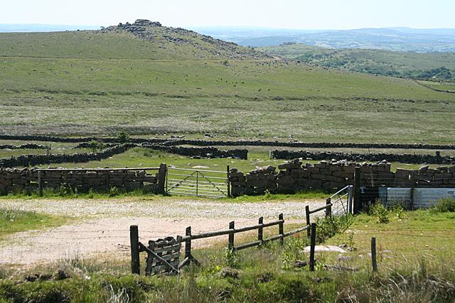 Dartmoor Forest: towards King's Tor