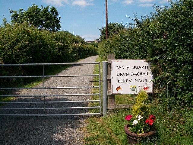 Entrance gate to the Bryn Bachau farm  road