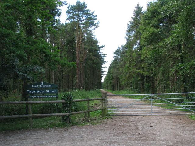 Entrance to Thurlbear Wood