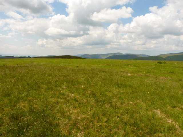 The summit of Llanerchfydaf