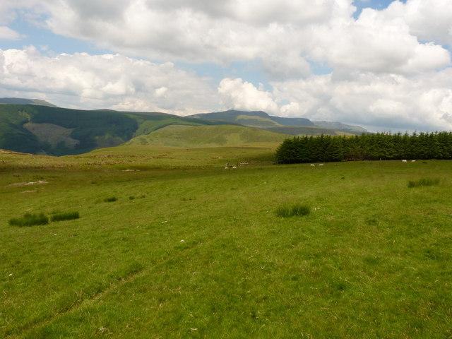 Westwards from the side of Llanerchfydaf