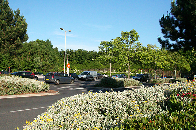 Exeter: at Sainsbury, Pinhoe Road 2