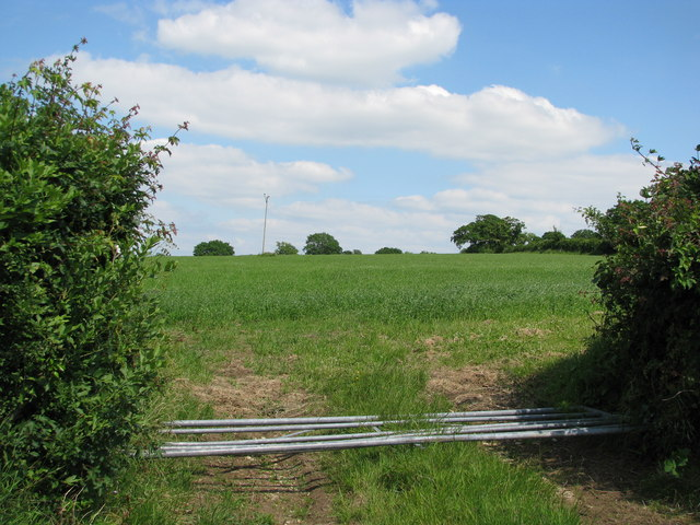 Toppled gate near Curland Common