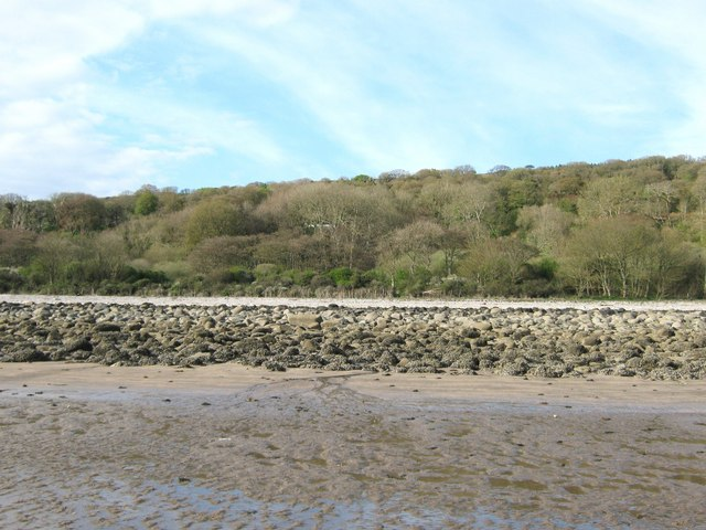 Carsluith Wood looking from the beach