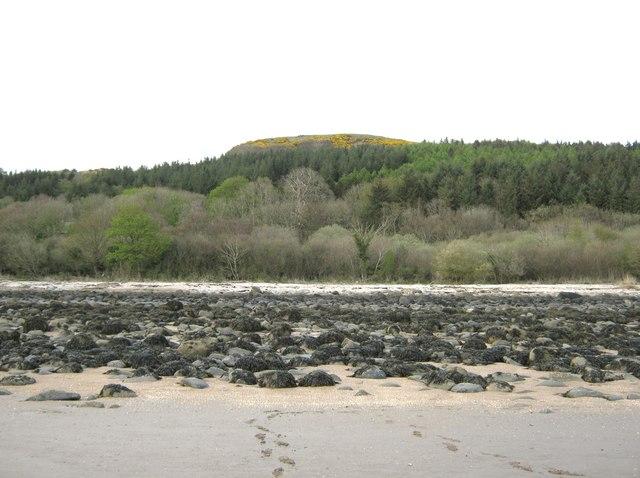 Looking towards Carsluith Wood