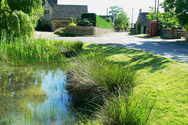 A small pond in Driffield (3)