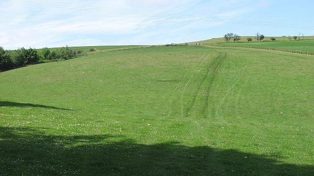 Field,  Greenburn