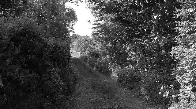 Farm road, Greenburn