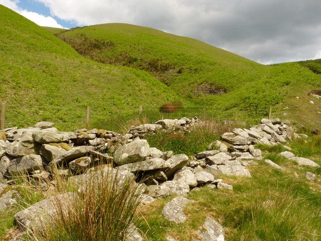 Ruined sheepfold in the valley of the Nant Efail-fach