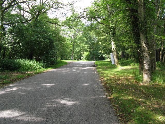 Recent re-surfacing on Knightons Lane