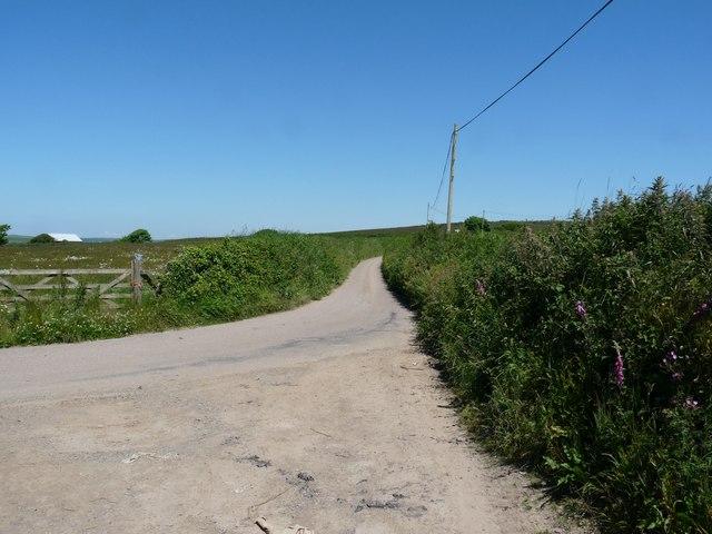 Long Lane heading towards Lobbthorn Stile
