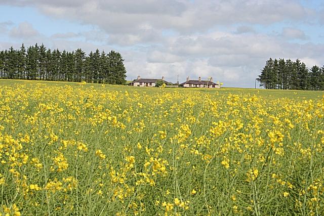 Ardconnon Farm Cottages