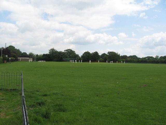 Cricket Pitch, Smallfield