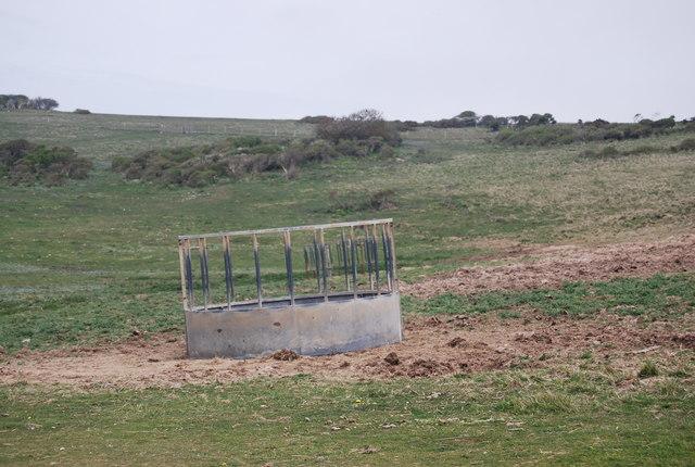 Sheep feeder