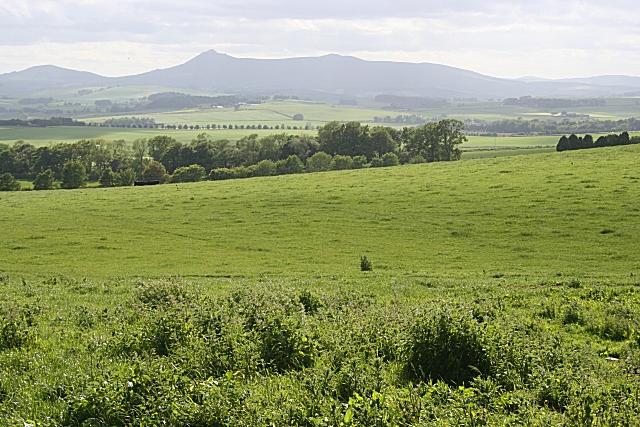 Looking towards Bennachie