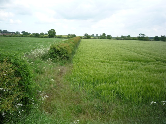 Farmland off the Selby North Mine road