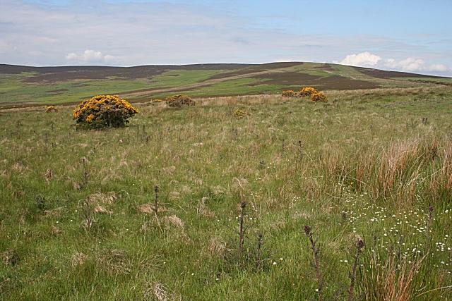 Hill of Allochie