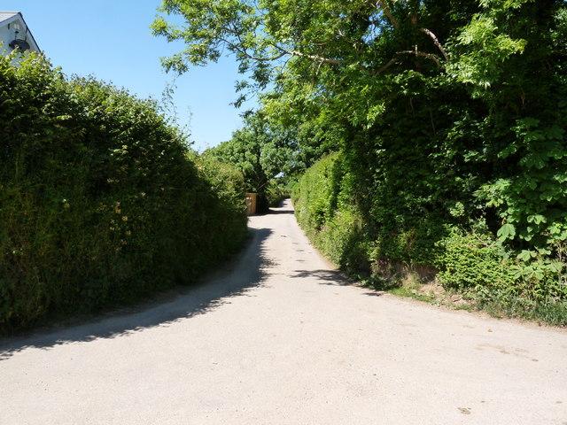 Bottoms Lane heading away from Darracott towards North Buckland
