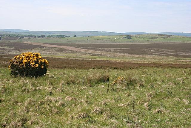 Moorland near Monboys