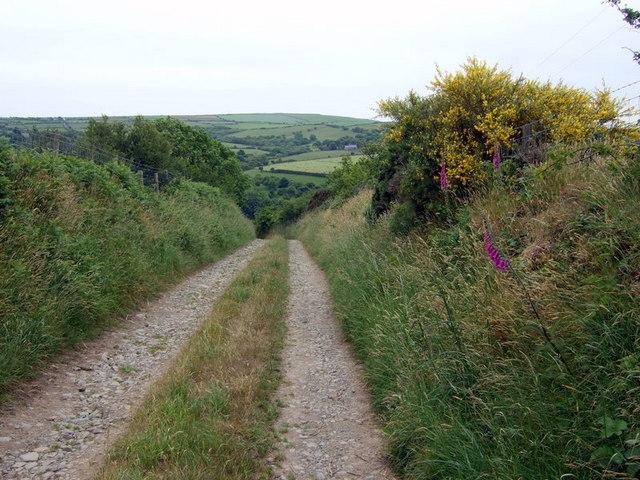 Old lane  to Trecwn