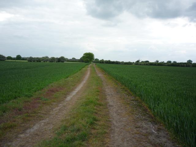 Bridleway to Warren House Farm