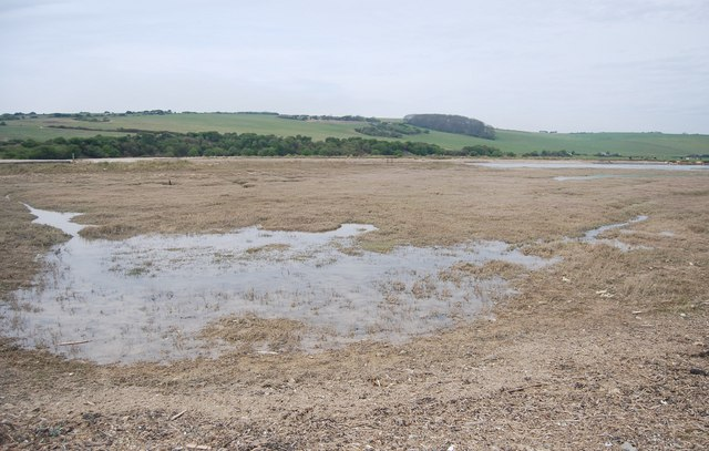 Marsh by the River Cuckmere
