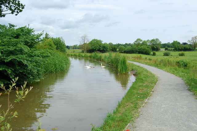 Restored canal beginning to recover