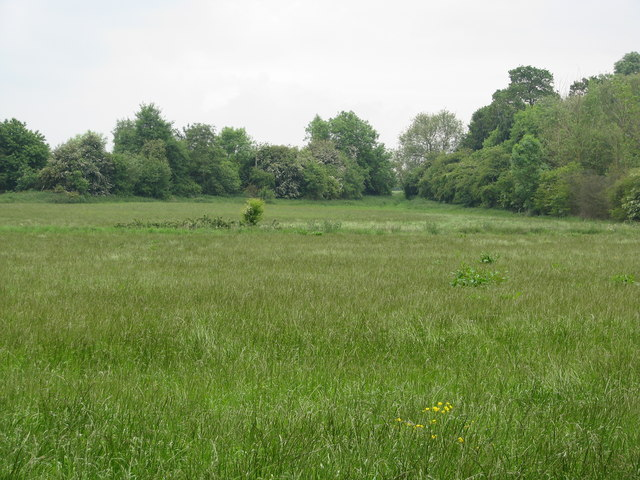 Field near Great Milton