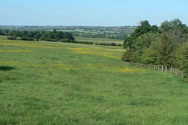 Fields near Woodlinkin