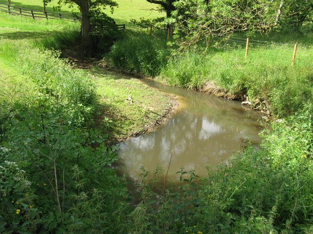 Meandering stream at Dunsfold Ryse