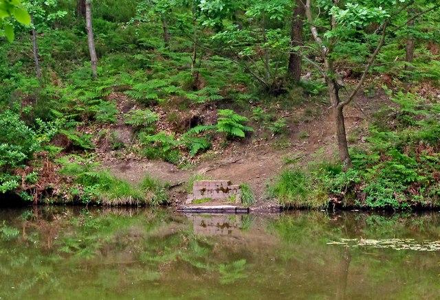 Fishing platform at pond near Uncllys Farm, Wyre Forest
