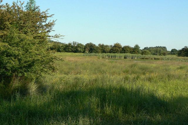 Erewash Meadows