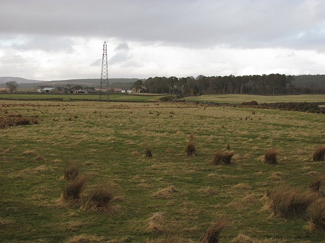 Wet  grazing, Strath Tirry