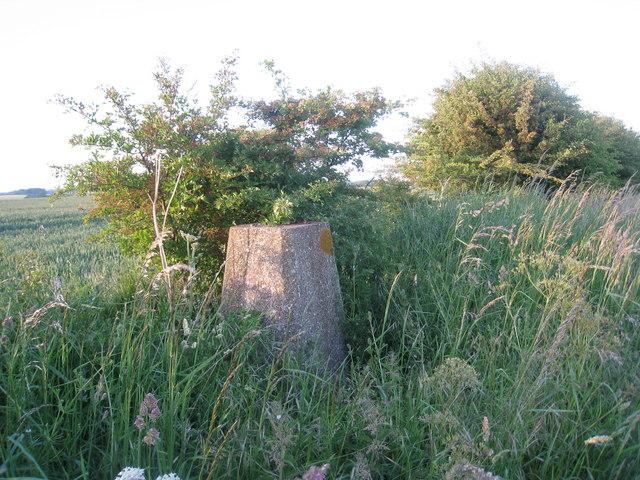 Triangulation Pillar