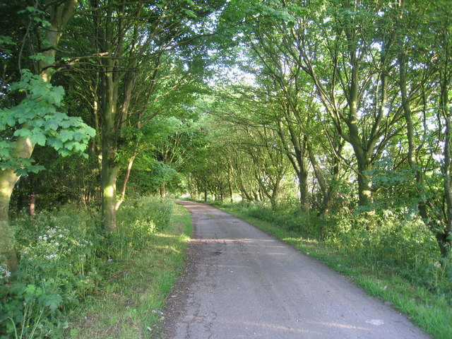 Once part of the Bluestone Heath Road