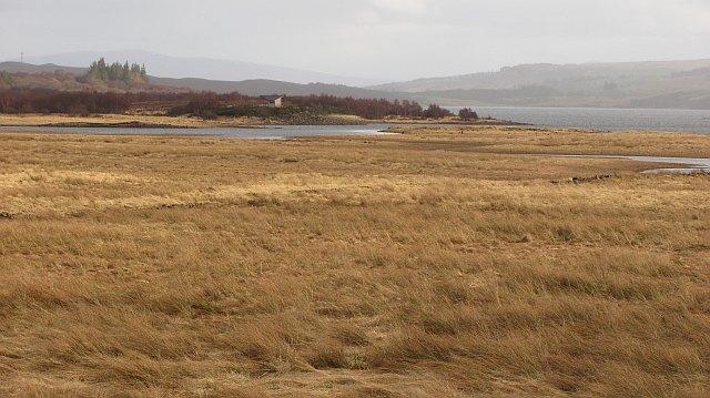 Wetland, Loch Shin
