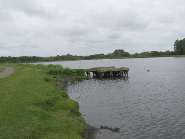 Pond dipping platform at Big Waters Country Park