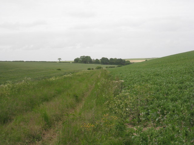 View along the valley in the direction of Pyewipe Farm