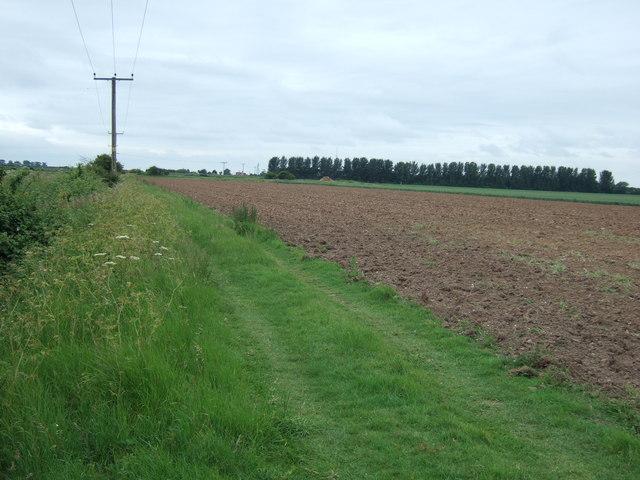 Bridleway north of West Walton