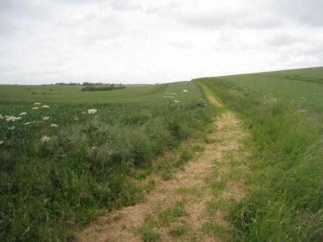 Bridleway to Haugham