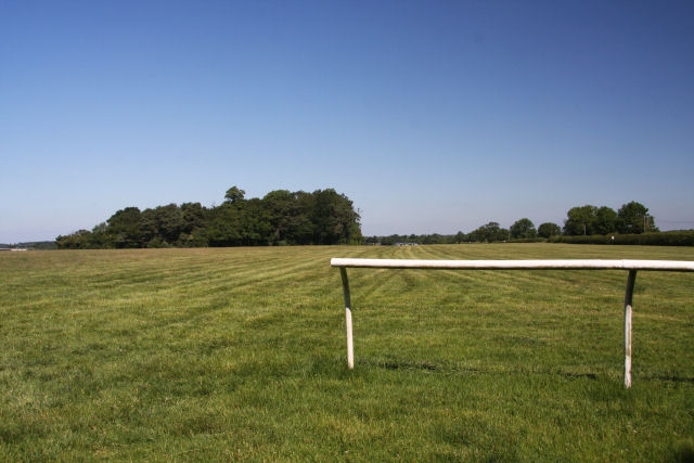 Water Hall Gallops