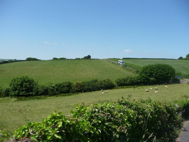 South Hams : Grassy Fields