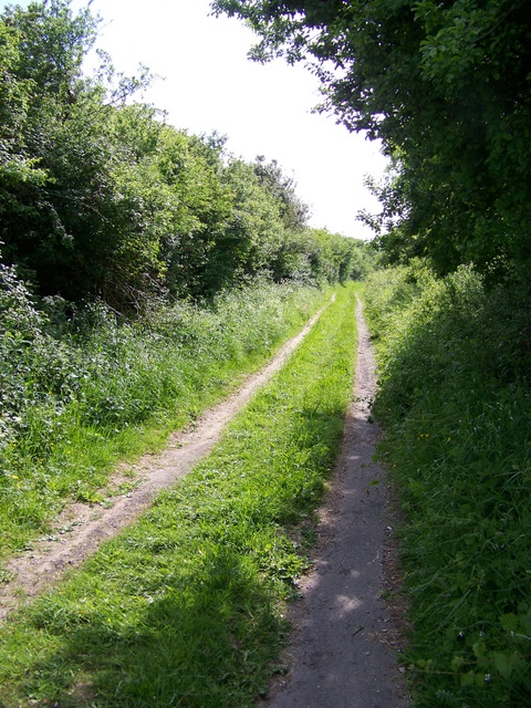 Byway near Oxenwood