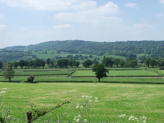 Pasture near Leighton, Powys