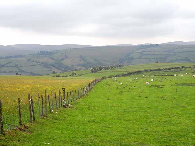 Fence and fields above Llanllwyd
