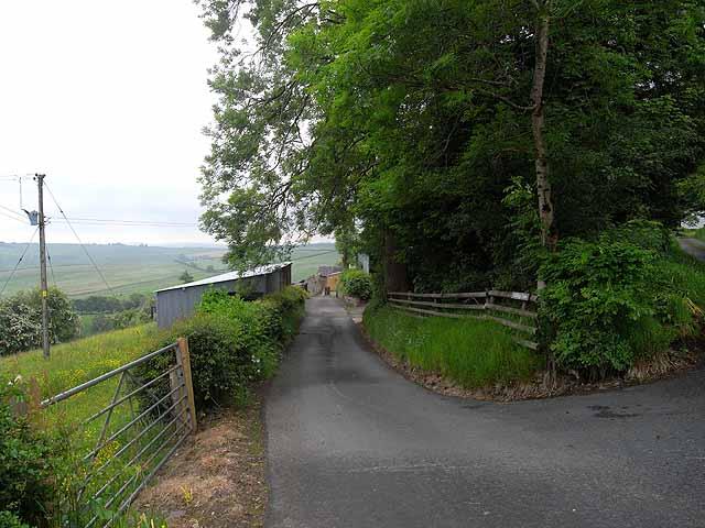 Driveway to Riddings Farm