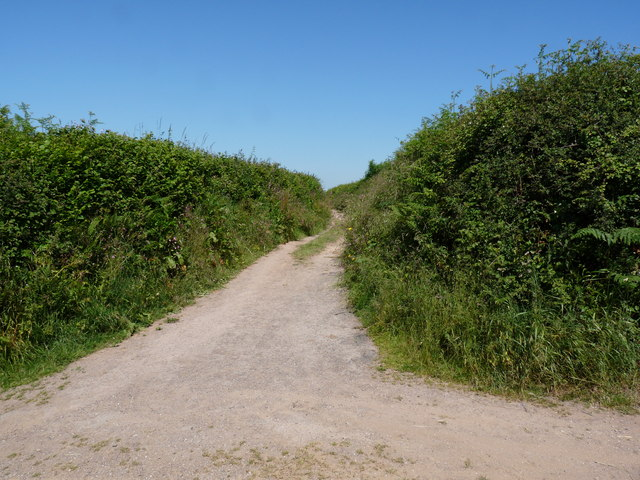 A track which leads from Northfield Lane to North Buckland