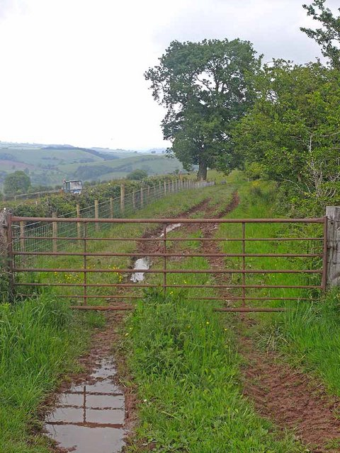 Muddy lane, Dowke Hill